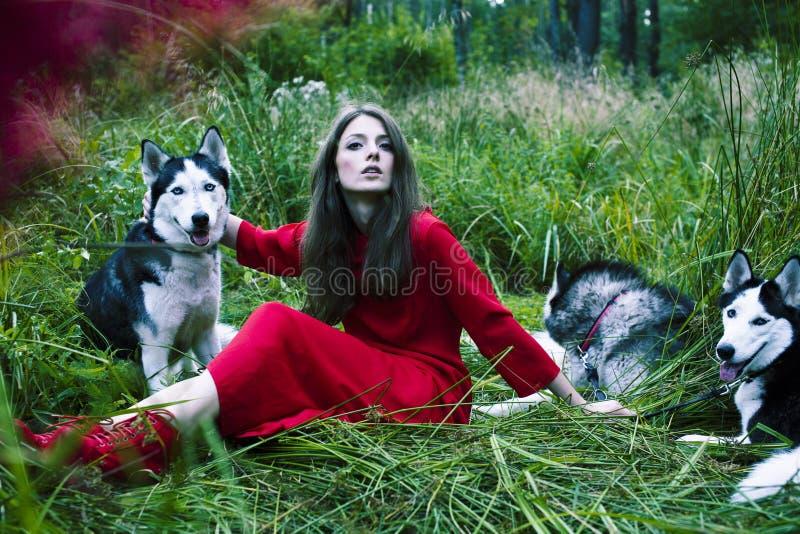 La mujer en vestido rojo con el árbol wolfs, bosque, retrato del misterio de los perros del perro esquimal imagenes de archivo