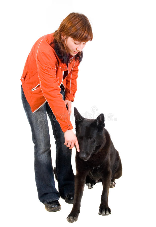 La mujer es entrenamiento del perro imagen de archivo libre de regalías