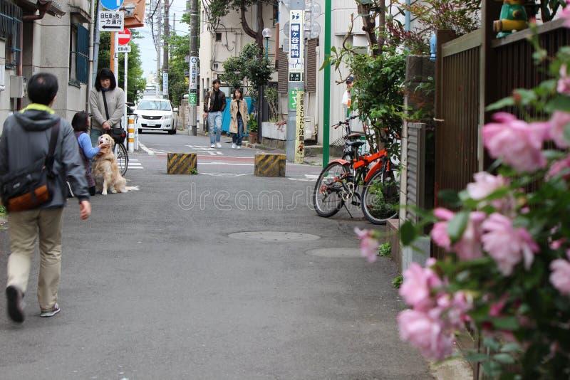 La mujer está acariciando un perro y un par está caminando en la calle japonesa foto de archivo libre de regalías