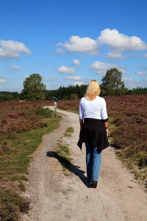 La mujer está recorriendo en naturaleza holandesa típica imagen de archivo libre de regalías