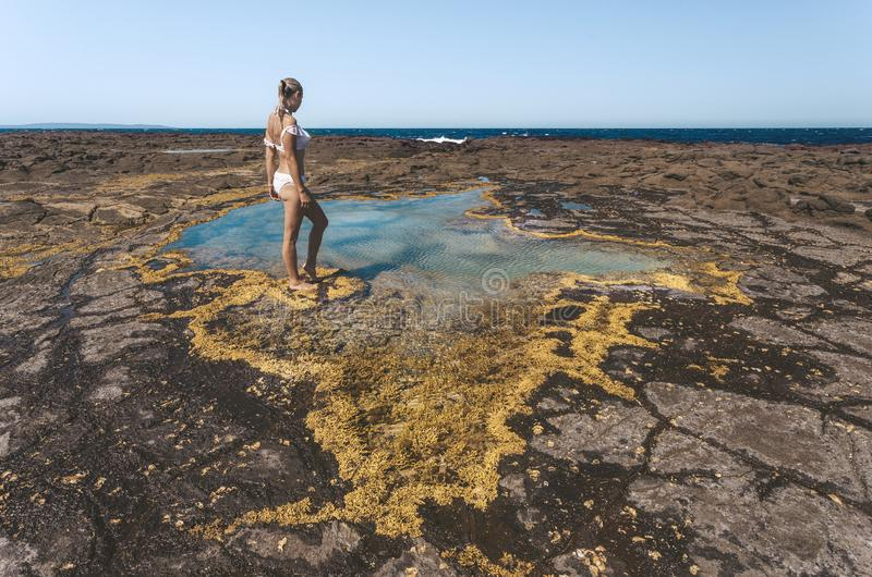 La mujer hace una pausa una pequeña piscina de la roca afiló con alga marina amarilla imágenes de archivo libres de regalías
