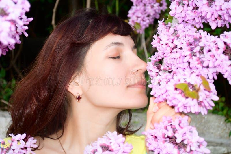 La mujer huele las flores del redbud fotos de archivo libres de regalías