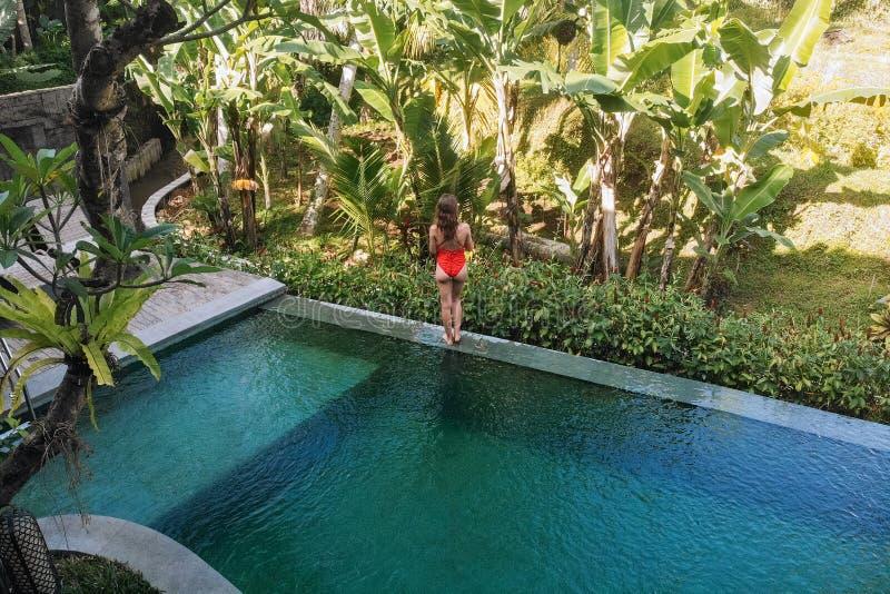 La mujer irreconocible en el bikini rojo que permanece al borde de piscina en Bali admira una hermosa vista de las palmeras lujo imágenes de archivo libres de regalías