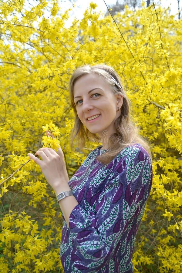 La mujer joven alegre contra la perspectiva del forzition floreciente Retrato fotos de archivo libres de regalías