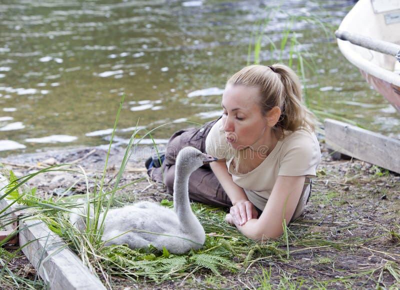 La mujer joven cerca de un pájaro de bebé de un cisne en el banco del lago fotos de archivo