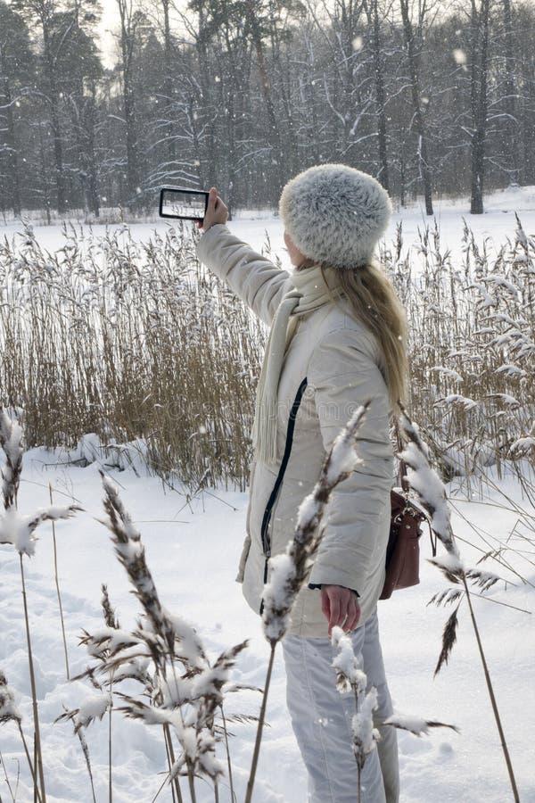 La mujer joven en una chaqueta blanca fotografía un panorama de la costa del lago del bosque del invierno en el teléfono fotografía de archivo libre de regalías