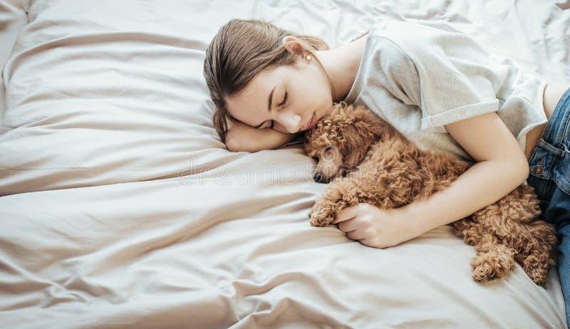 La mujer joven es de mentira y durmiente con el perro de caniche en cama imagenes de archivo