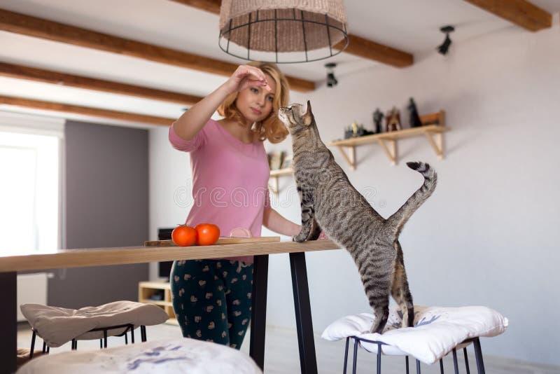 La mujer joven está alimentando su gato en casa foto de archivo