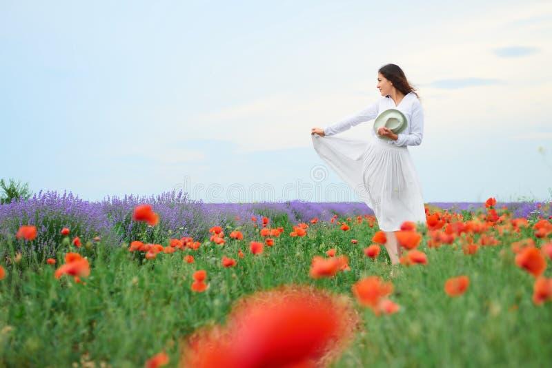 La mujer joven está en el campo de la lavanda, paisaje hermoso del verano con las flores rojas de la amapola imagen de archivo libre de regalías
