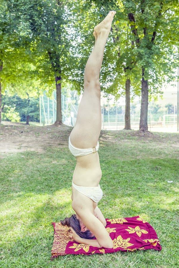 La mujer joven hace posiciones del pino en un parque imagen de archivo libre de regalías