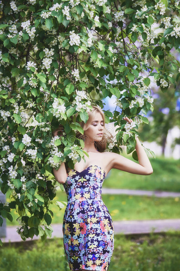 La mujer joven hermosa de la moda al aire libre rodeada por la lila florece verano Arbusto de lila del flor de la primavera Retra imagen de archivo