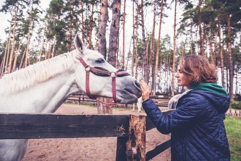 La mujer joven hermosa que frota ligeramente la nariz de un caballo gris, ama imágenes de archivo libres de regalías