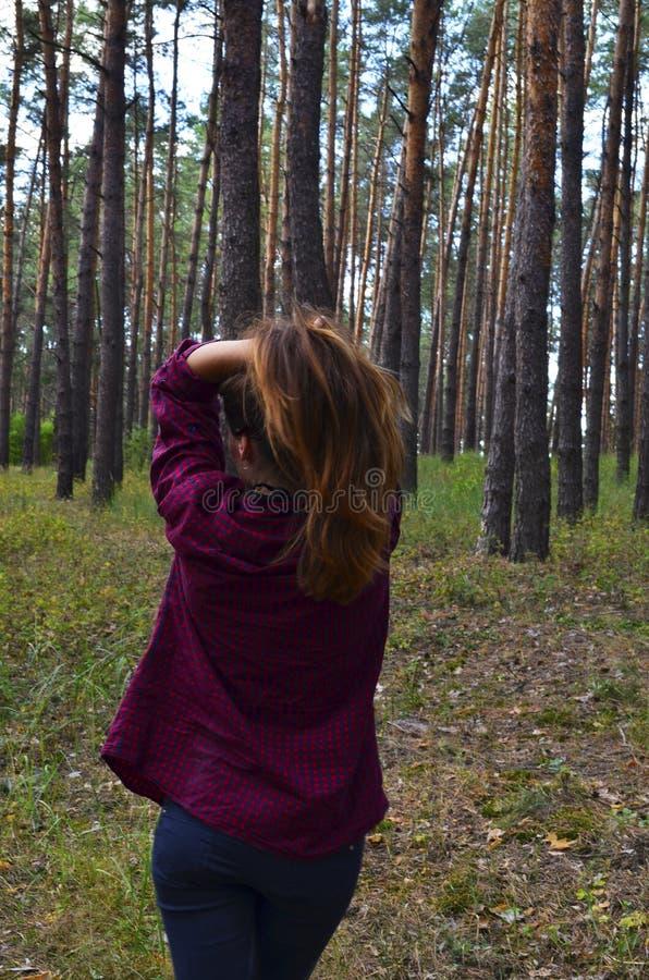 La mujer joven hermosa se sostiene el pelo en las manos Visión posterior foto de archivo libre de regalías
