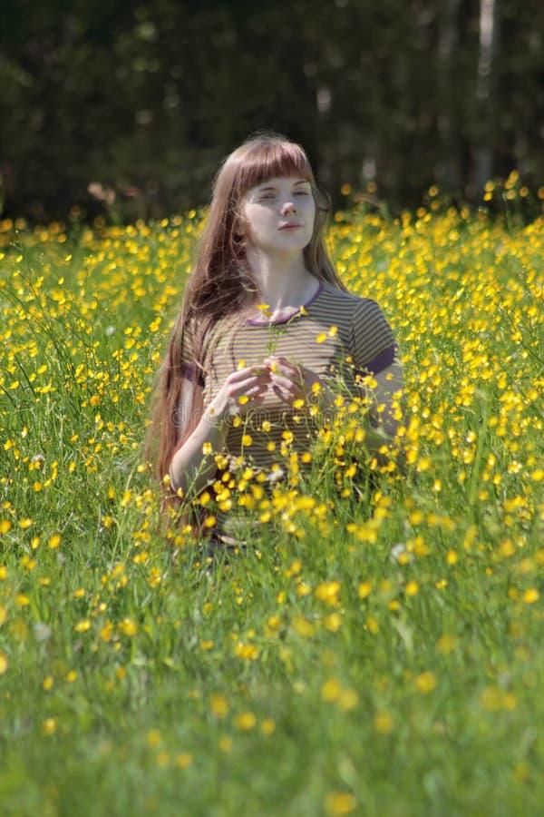 La mujer joven se sienta entre las flores amarillas en el prado fotografía de archivo