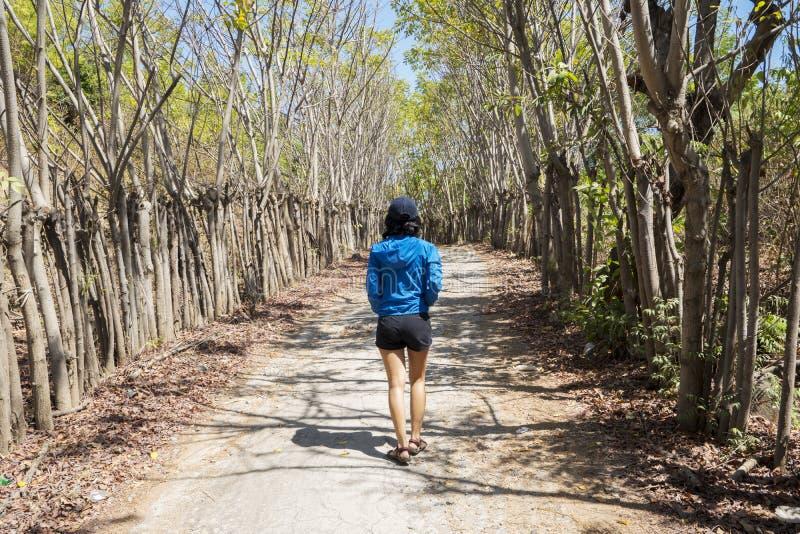 La mujer joven sola camina en el bosque tropical imagenes de archivo