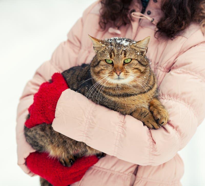 La mujer joven sostiene un gato imagen de archivo libre de regalías