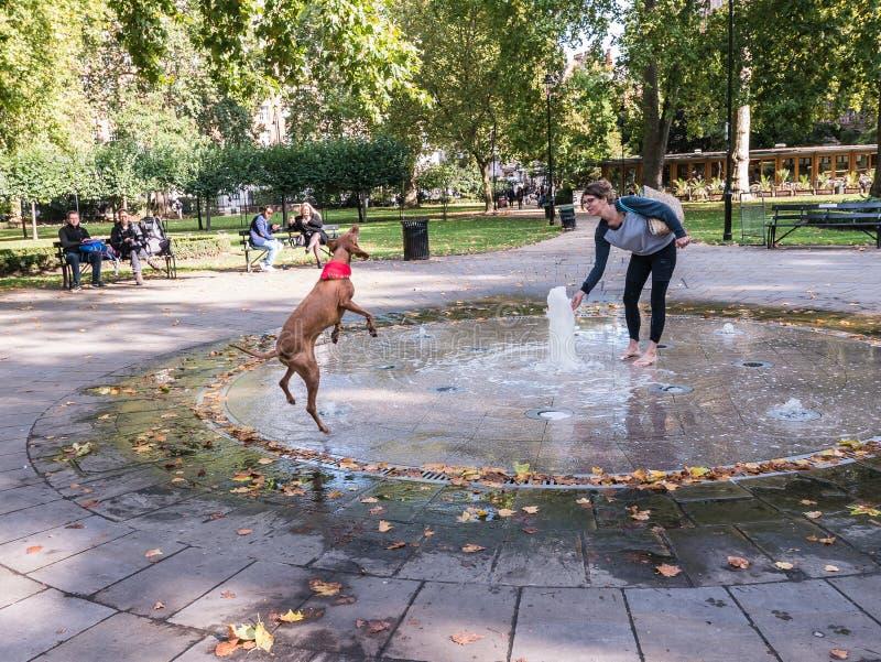 La mujer juega en fuente con su perro, en Russell Square, Londres foto de archivo libre de regalías