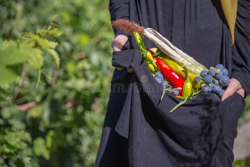 La mujer lleva a cabo en sus manos la cosecha de verduras imágenes de archivo libres de regalías