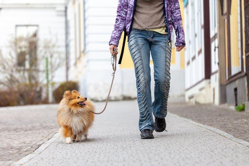 La mujer lleva su perro en un correo imagen de archivo