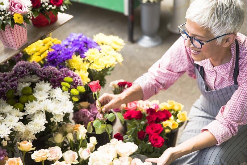 La mujer mayor arregla las flores en mercado local de la flor fotos de archivo libres de regalías