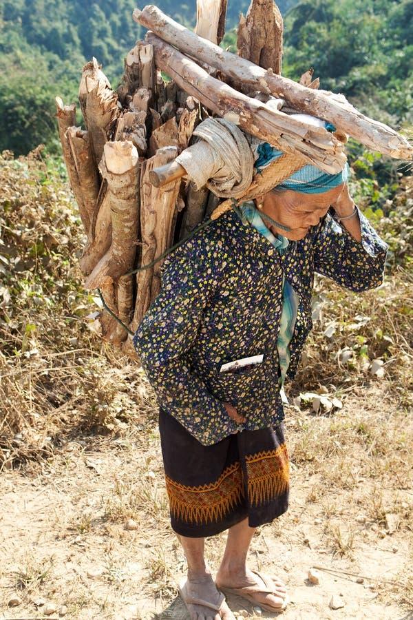 La mujer mayor Asia lleva la leña imagenes de archivo