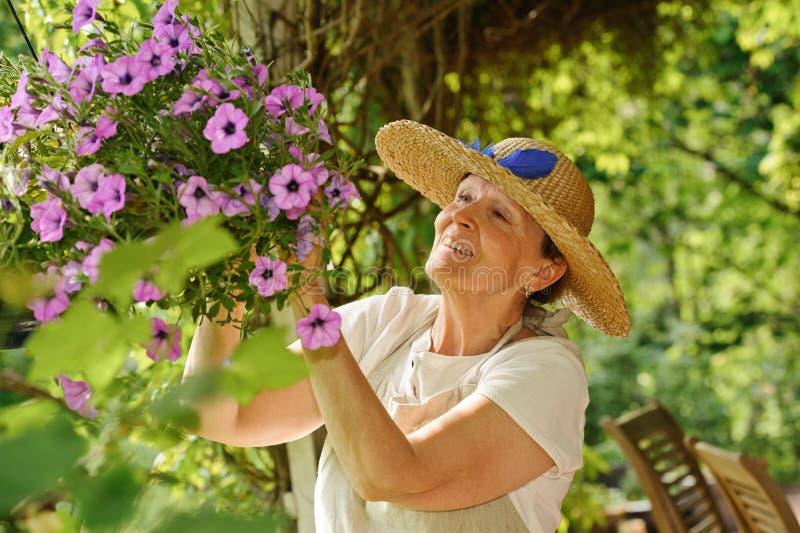La mujer mayor tiende las flores fotografía de archivo libre de regalías
