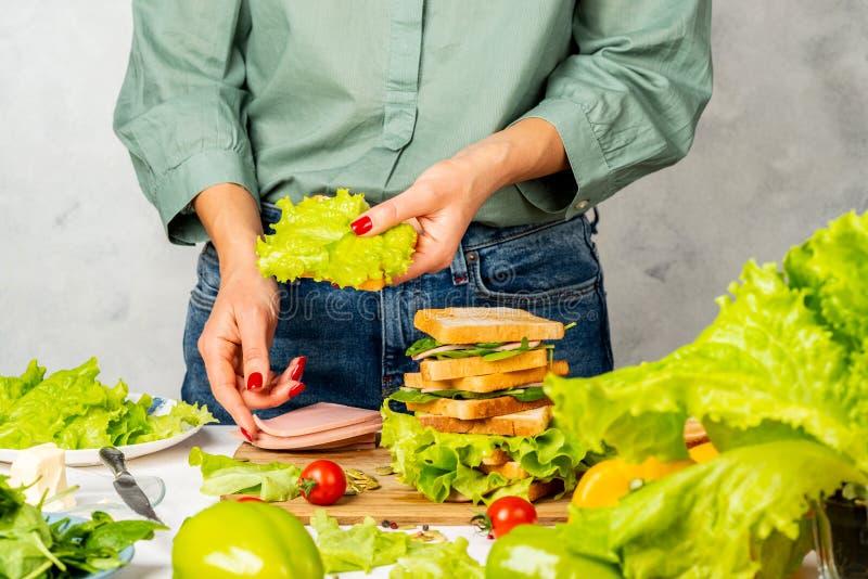 La mujer prepara sándwiches con jamón, mantequilla, lechuga y espinacas fotografía de archivo libre de regalías