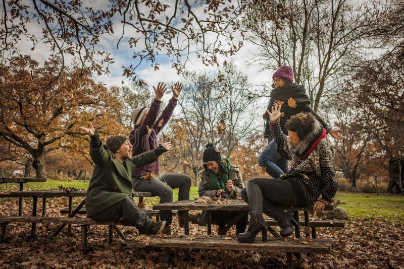 La mujer que lanza para arriba se va en el parque con los amigos fotografía de archivo libre de regalías