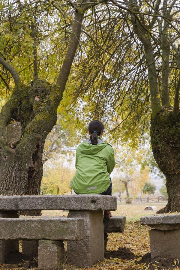 La mujer que se sienta en un banco de parque con amarillo deja caer de árboles fotos de archivo libres de regalías