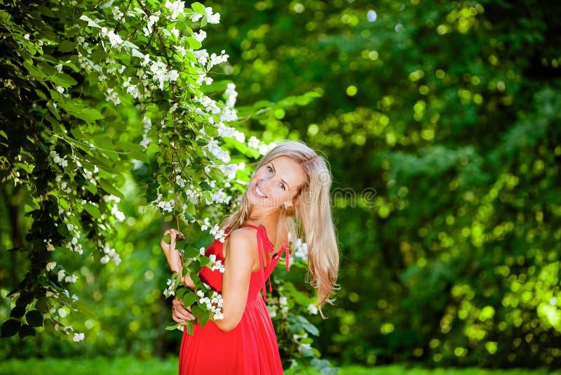 La mujer rubia hermosa en vestido rojo cuesta sobre jazmín y smil imagen de archivo