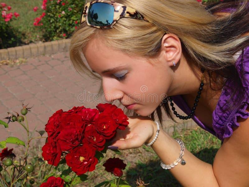 La mujer rubia joven huele rosas rojas fotografía de archivo