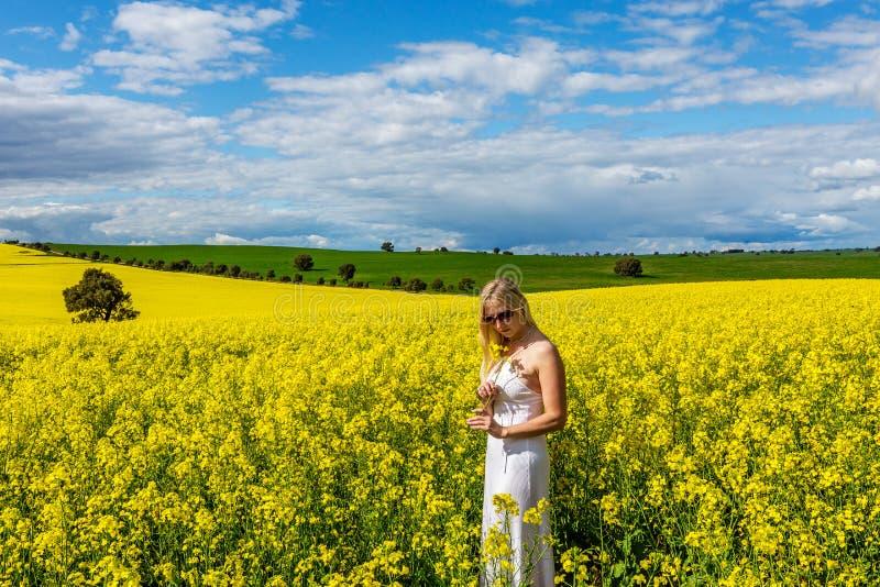 La mujer se coloca en el campo del canola Australia rural imagen de archivo