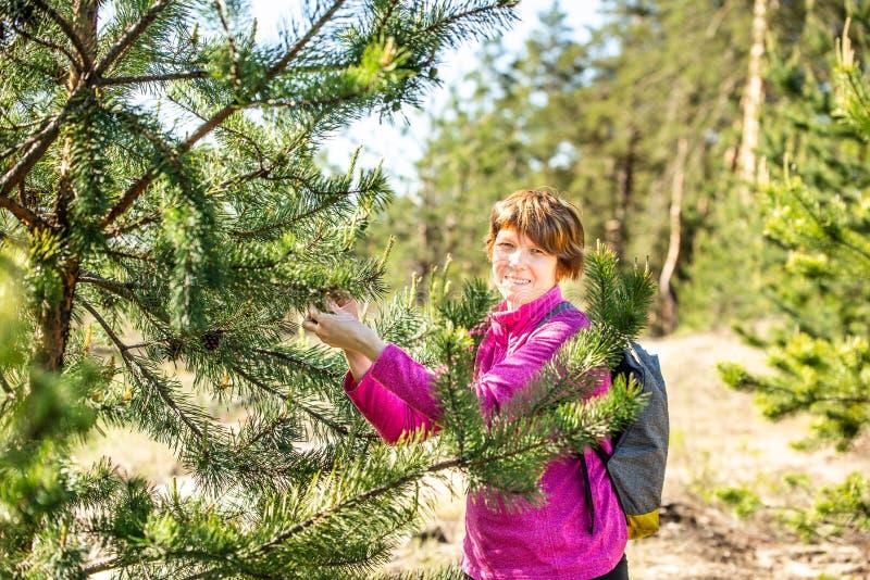 La mujer sonriente rasga apagado conos en un pino imagen de archivo libre de regalías