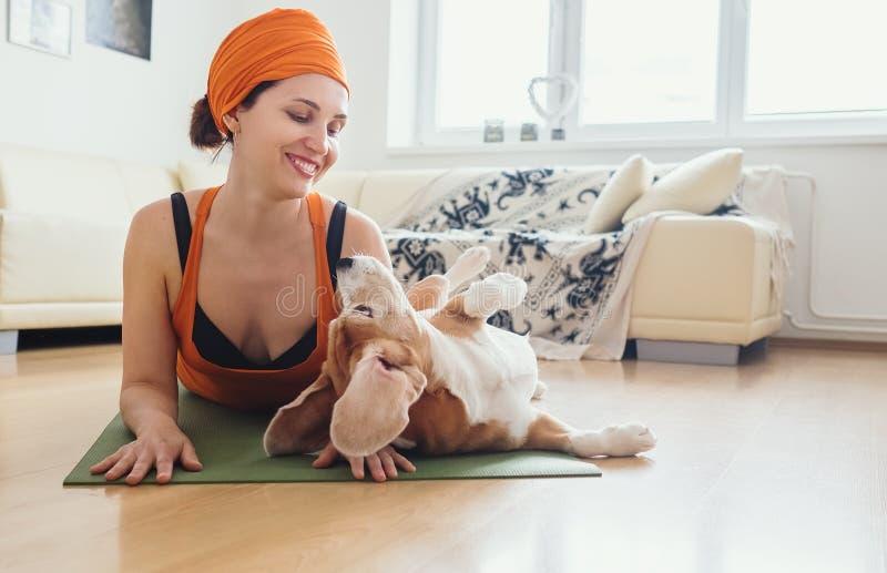 La mujer tiene práctica de la yoga en casa pero intento del perro de jugar con ella imagen de archivo