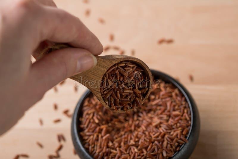 La mujer toma el arroz crudo pelado rojo del jazmín en cuenco negro con la cuchara en fondo de madera y es una especialidad de Ca fotos de archivo