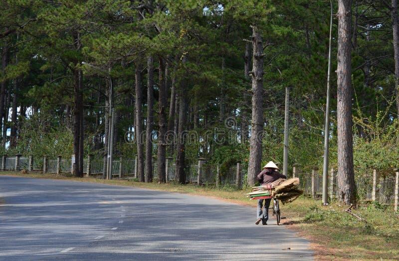La mujer vietnamita con la bici en la calle en Phan sonó, Vietnam foto de archivo