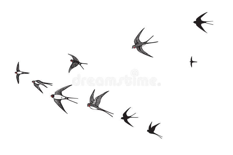 La multitud de la silueta de los pájaros traga stock de ilustración