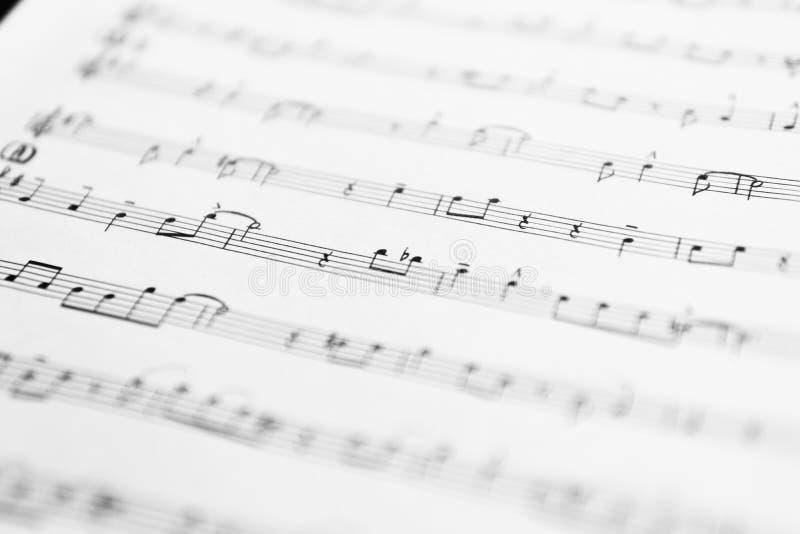 La musique note des feuilles photos libres de droits