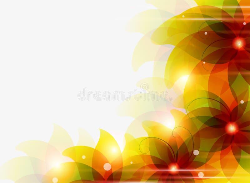 La naranja transparente florece el fondo stock de ilustración