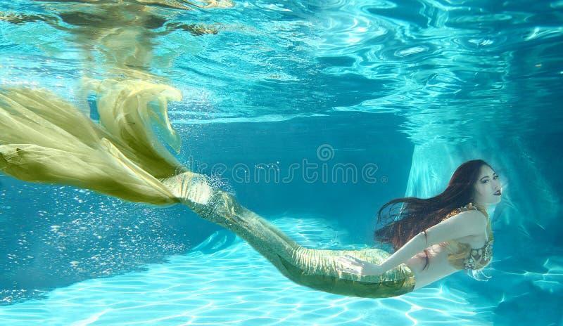 La natación hermosa le gusta una sirena subacuática al aire libre imagenes de archivo