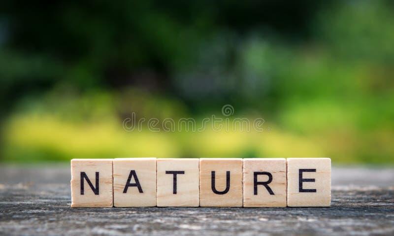 La natura di parola, composta delle plance di legno leggere sul backgroun immagini stock libere da diritti