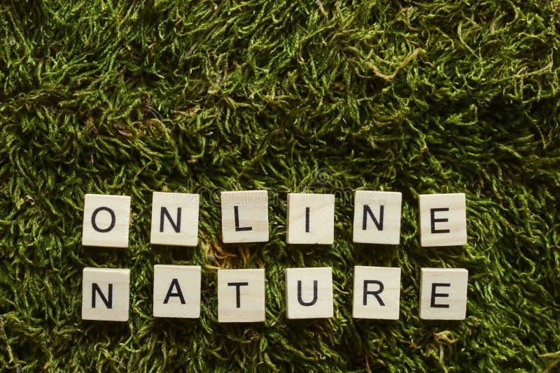La natura online scritta con le lettere di legno ha cubato la forma sull'erba verde fotografia stock libera da diritti