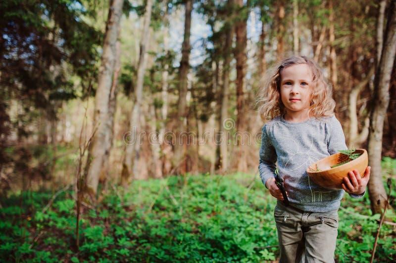 La naturaleza de exploración de la muchacha del niño en bosque temprano de la primavera embroma el aprendizaje amar la naturaleza imágenes de archivo libres de regalías
