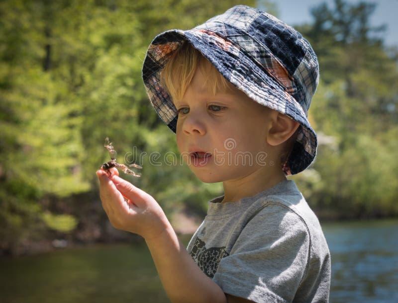 La naturaleza de exploración del muchacho encuentra una libélula fotos de archivo