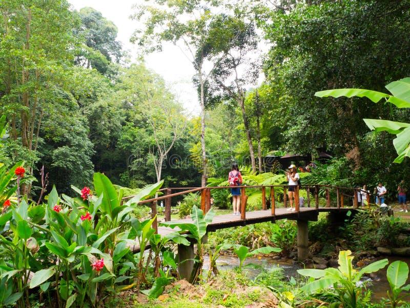 La naturaleza recurre Tailandia fotos de archivo