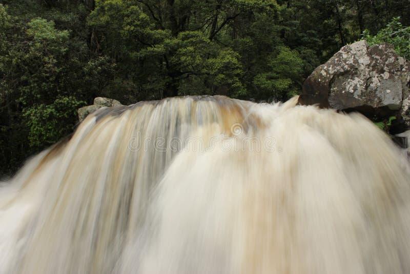 La nature de cascade de crique de snobs aménage Victoria en parc images libres de droits