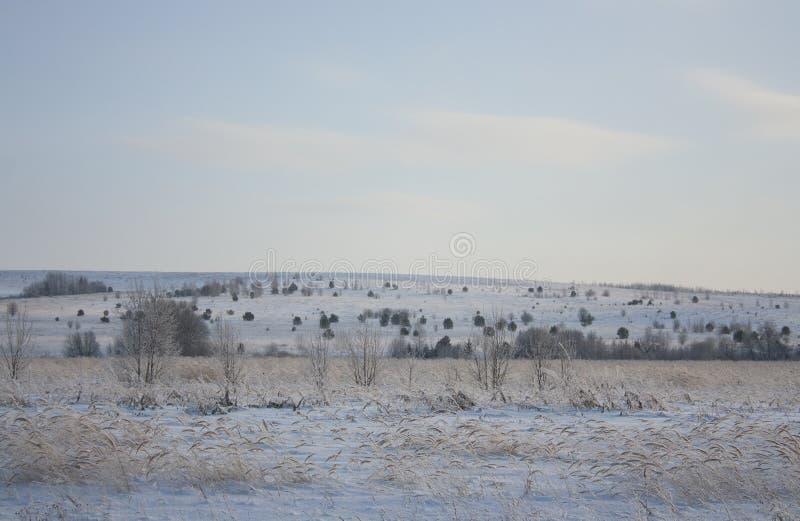 La nature de la Russie La nature des Monts Oural image libre de droits