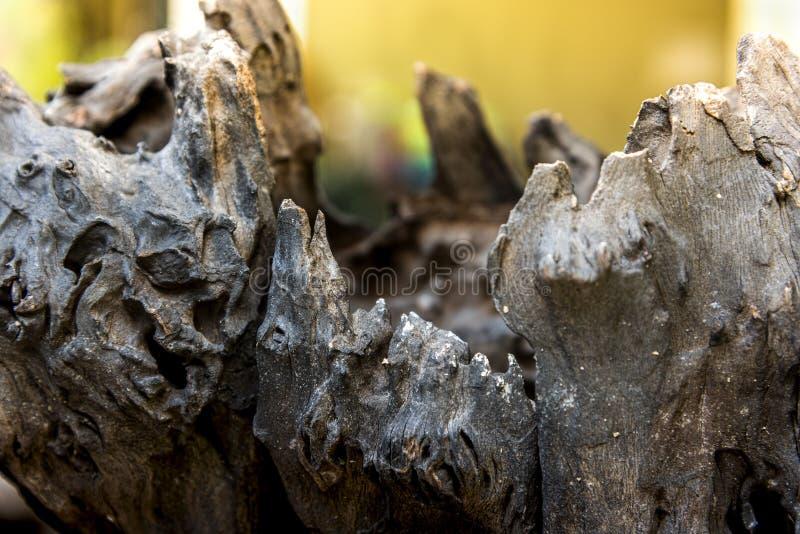 La nature du vieux bois de construction délabré photographie stock libre de droits