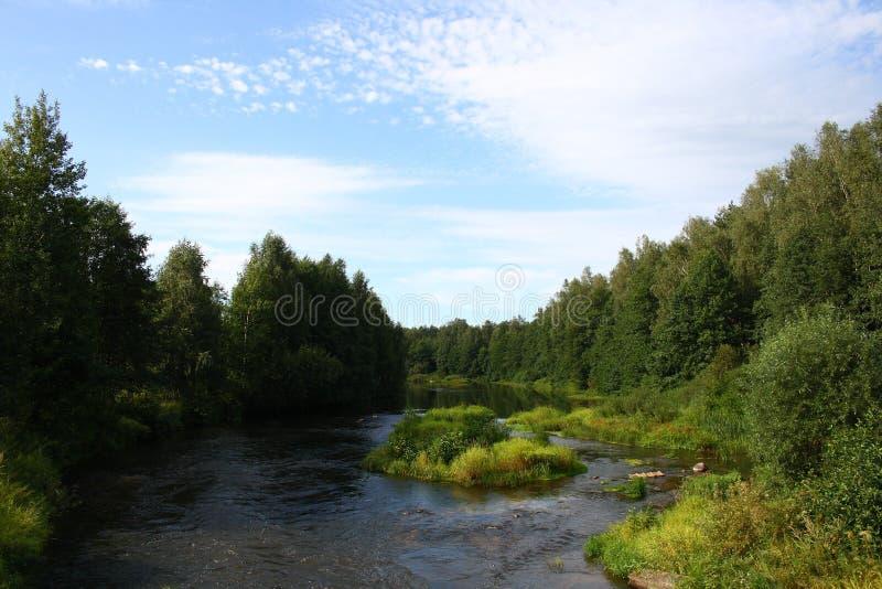 La nature près au fleuve en Russie image stock