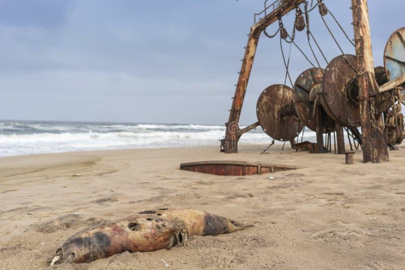 La nave demolita ed ha sepolto ed abbandonato sulla costa del deserto di Namibe L'Africa, Angola immagine stock libera da diritti